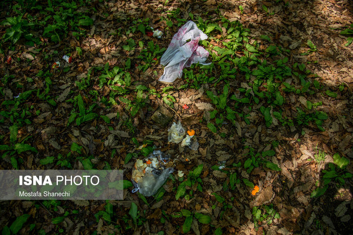 تصاویر| به جامانده از مردم در روز طبیعت!