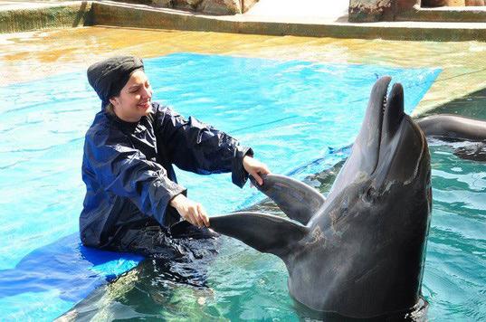 دلفین بازی مهناز افشار در استخر / تصاویر