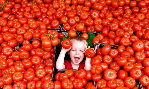 یافتههای تازه دانشمندان برای کاهش خطر مرگ زودرس؛ دستکم روزی ۱۰ وعده میوه و سبزیجات بخورید!,