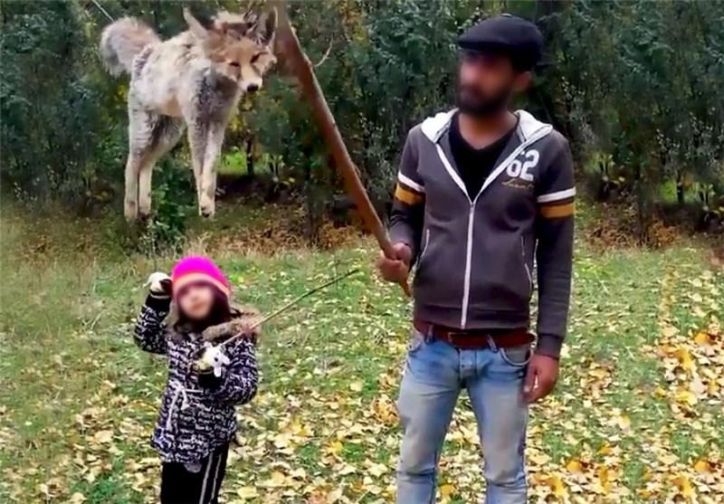 کشتار دلخراش روباه درمقابل چشمان دختر خردسال!؟ +تصاویر
