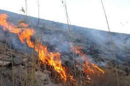 آتش سوزی درجنگل و مرتع کوه کول چپ منطقه کرکی پلدختر