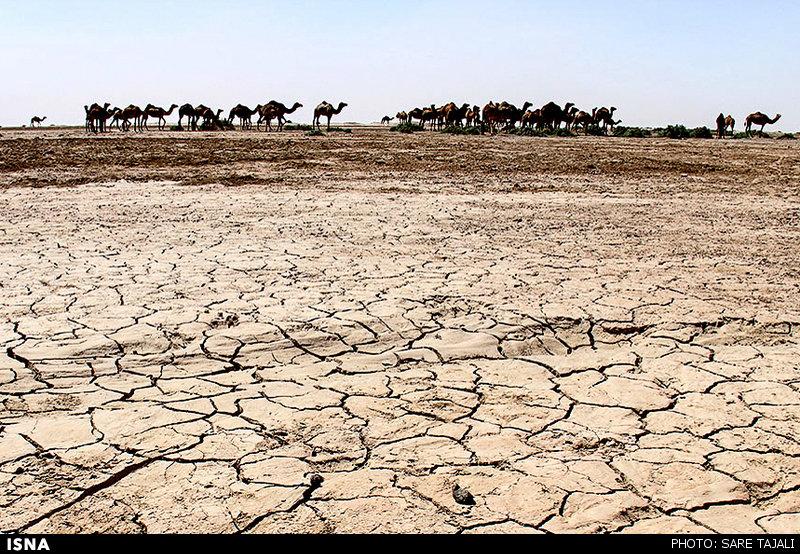 Image result for تصاویر تالاب جاز مریان خشک شده در ایران