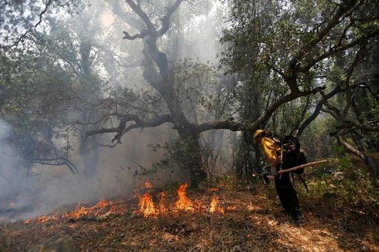 5 هکتار از مراتع سیردان در آتش سوخت