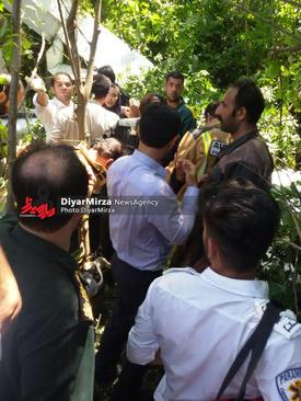 سقوط هواپیما روی درخت در رشت / خانم خلبان نجات یافت+تصاویر