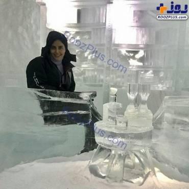بازیگر زن سرشناس ایرانی در یک هتل لاکچری سوئد | عکس