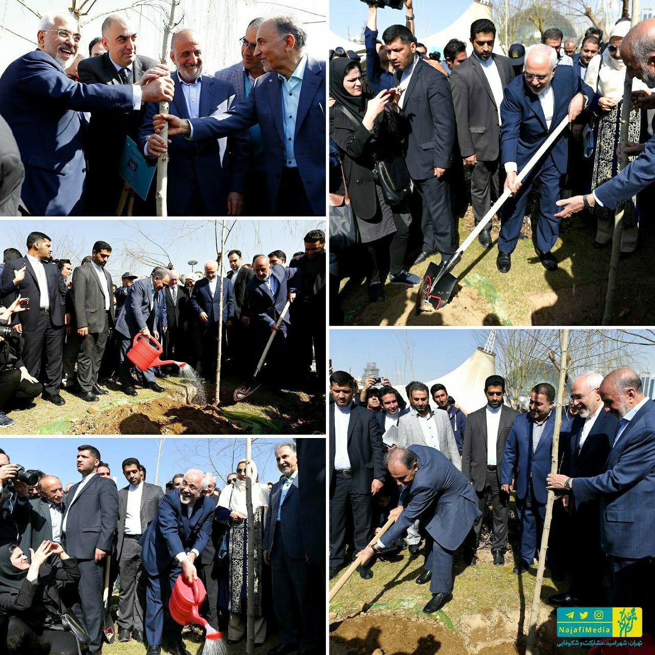 درختکاری ظریف و نجفی در بوستان نوروز/عکس