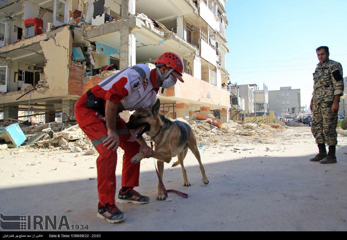 آخرین اخبار و آمار از زلزله شدید در غرب کشور/۴۳۰ کشته و بیش از ۷۰۰۰ زخمی+فیلم و عکس