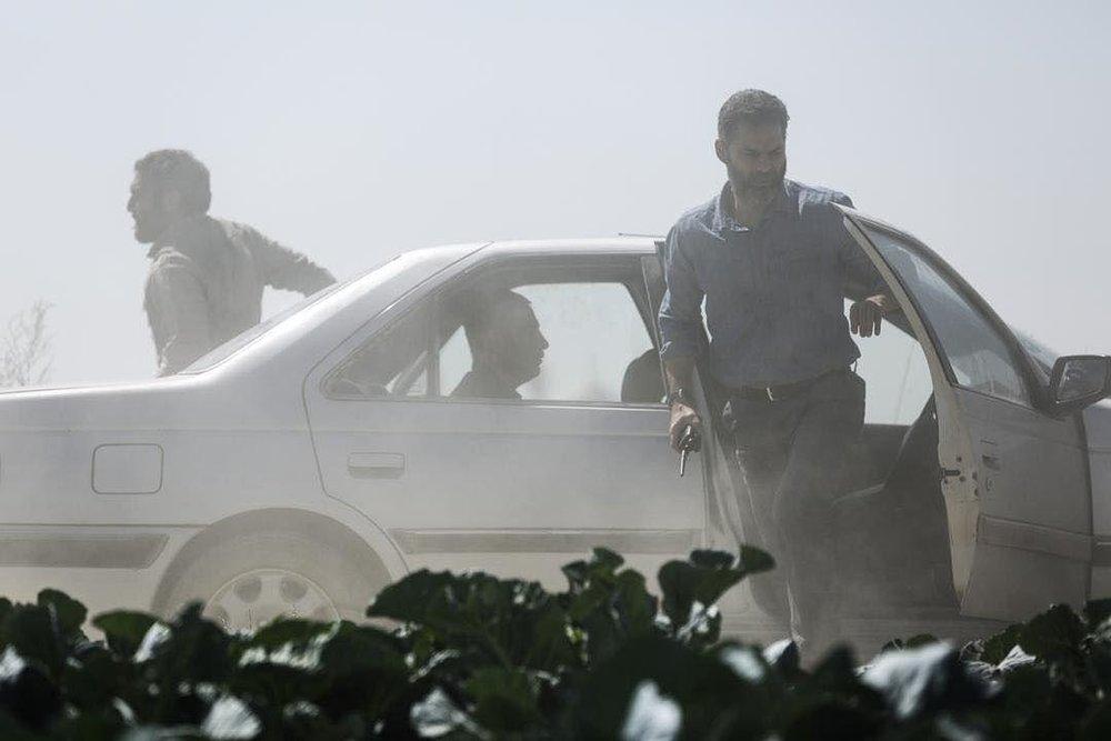 دلجویی کارگردان «متری شیش ونیم» از پلیس: تلخ سخن گفتن من با حافظان امنیت کشور رسم دوستی نبود