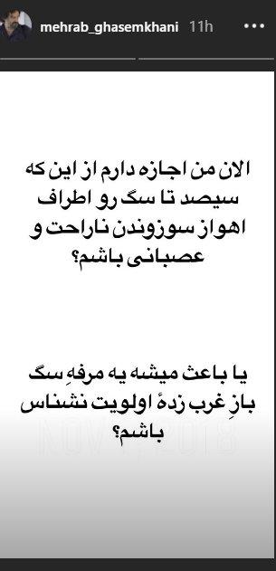 واکنش مهراب قاسمخانی به کشتن و سوزاندن سگها/ عکس