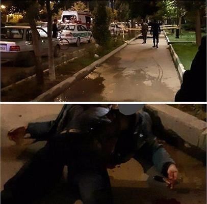 قتل هولناک مرد اردبیلی در مقابل دانشگاه/ عکس