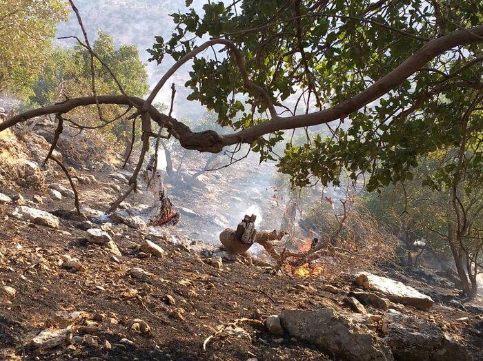 آتش در منطقه کپُک ایذه زبانه کشید