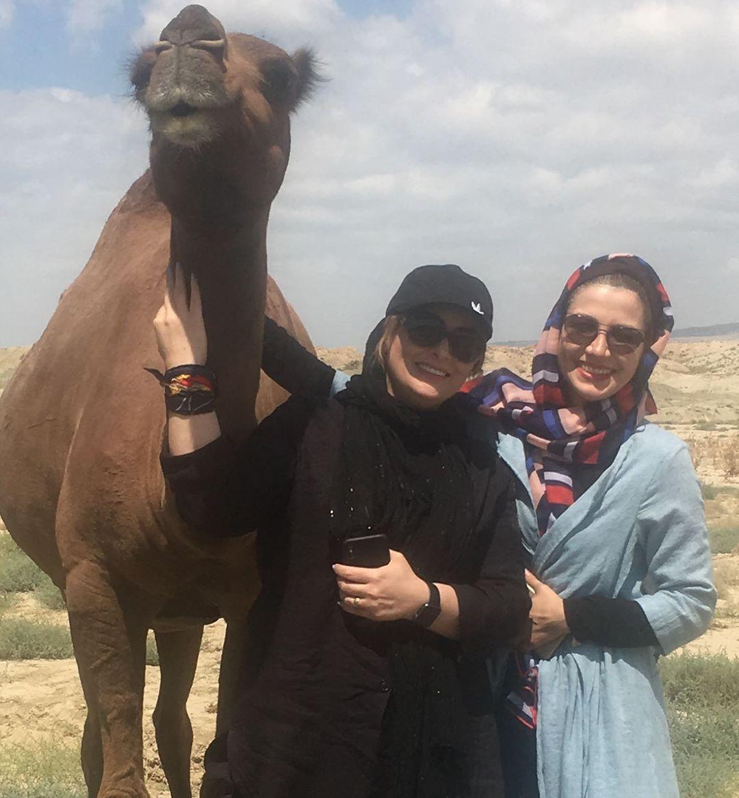 عکس یادگاری مجری مشهور با شتر