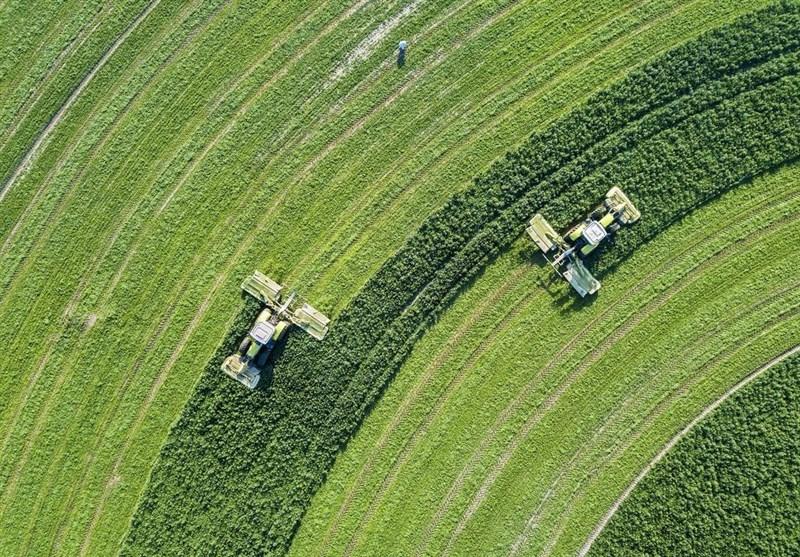 هشدار هواشناسی کشاورزی: باد و باران در راه است