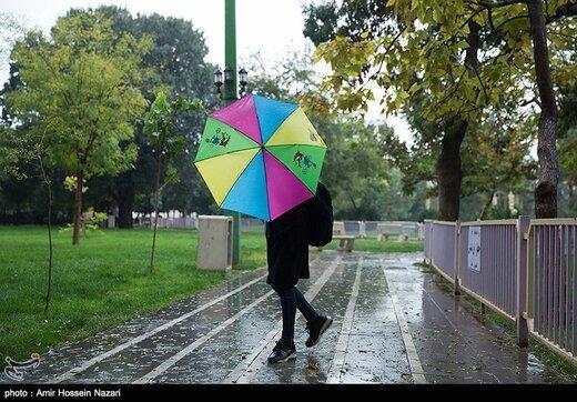 9 استان بارانی میشود