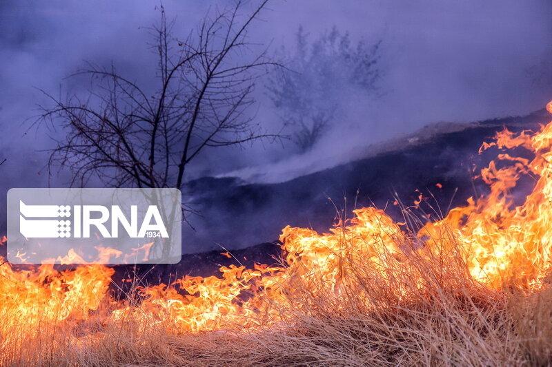 تلاش برای خاموش کردن آتش پارک ملی گلستان ادامه دارد
