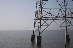 استخراج نفت بین ایران و عراق در تالاب هورالعظیم