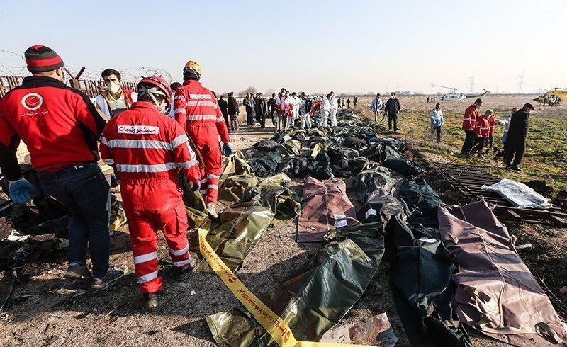 تصاویر  کاشت ۱۷۶ نهال به یاد قربانیان هواپیمای اوکراینی