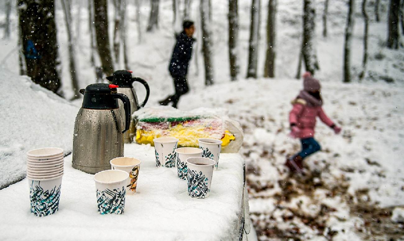 تصاویر| پیک نیک وسط برف و کولاک در جنگلهای بهشهر