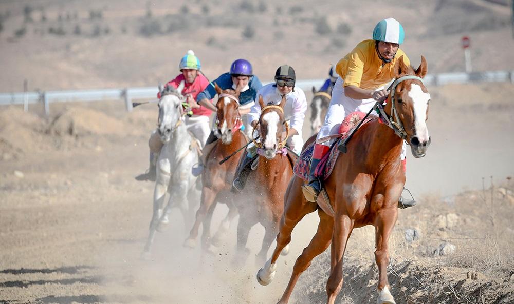 تصاویر| مسابقات سوارکاری در بجنورد