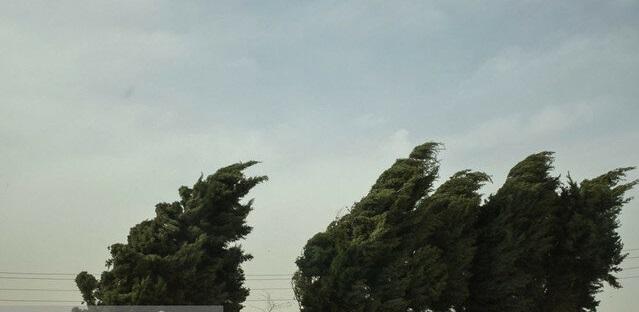 هشدار هواشناسی نسبت به وزش باد شدید در 13 استان