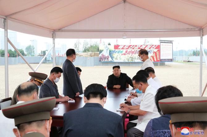 حکومت کره شمالی خطاب به مردم: برنج و گوشت نیست، لاکپشت بخورید!