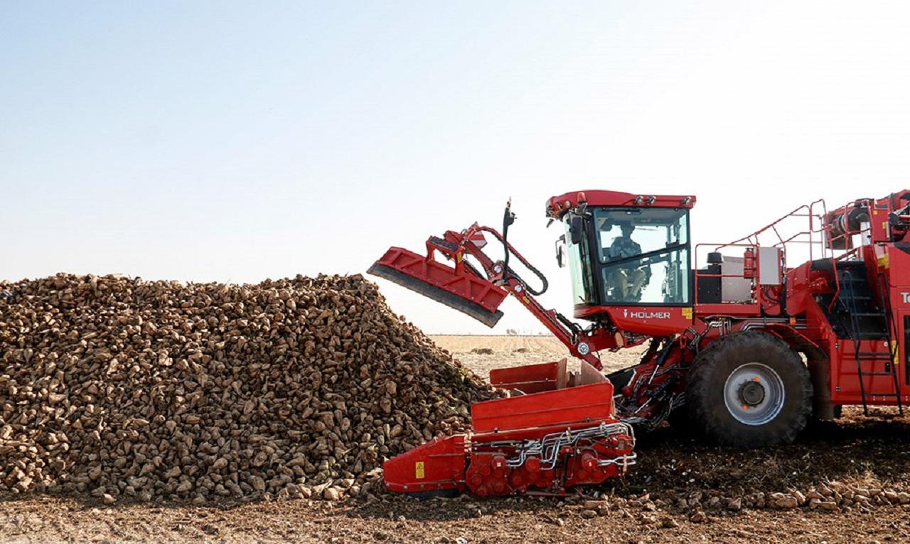تصاویر  فرایند تولید قند و شکر