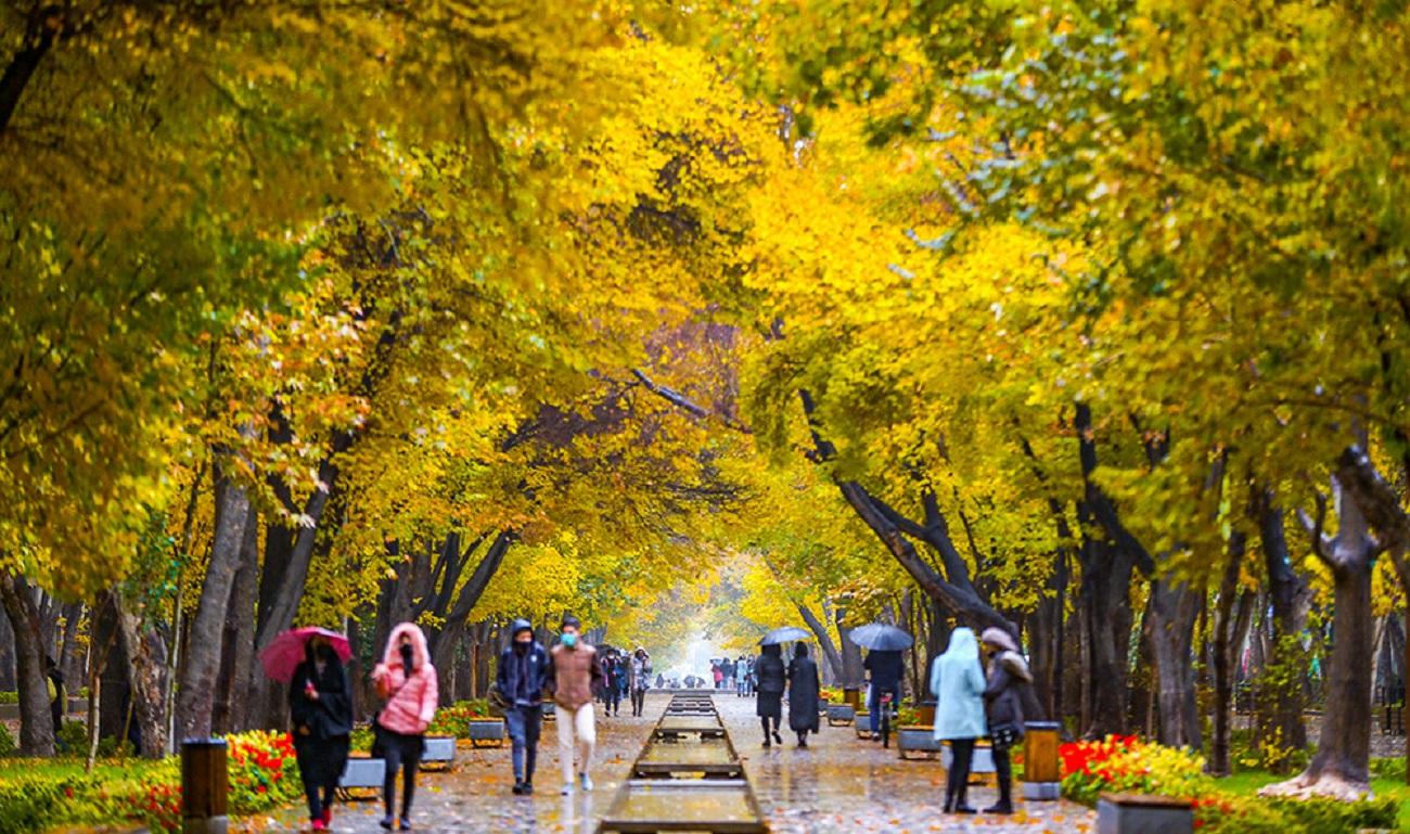 تصاویر| پاییز رنگارنگ ایران
