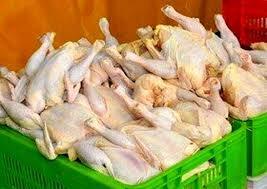 وزارت صمت: قیمت مرغ تا هفته آینده متعادل میشود