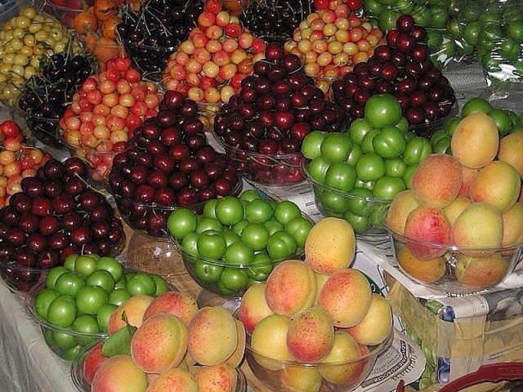 گرانترین میوه های فصل کدامند؟