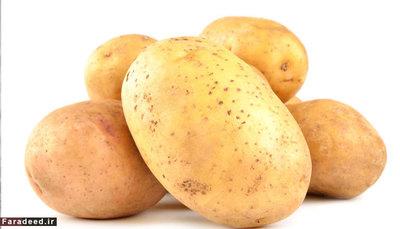 سیب زمینی بهترین ح برای نگهداری سیب زمینی، محیط خشک و خنک است؛ و نیز تا قبل از استفاده باید نَشُسته باقی بمانند. دمای یخچال باعث از بین رفتن نشاسته آن و حتی تغییر مزه آن به شیرین بشود. نگهداری در یخچال ممکن است منجر به تیرگی پوست آن نیز بشود.